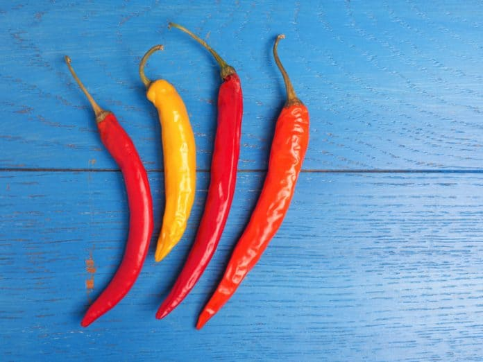 Four hot chillies on blue table