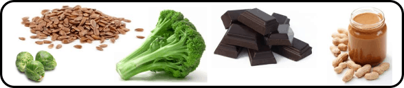 Lipotropic Nutrients