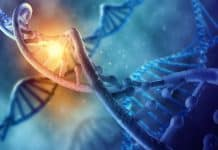 DNA Molecule Representing Anti-aging Concept