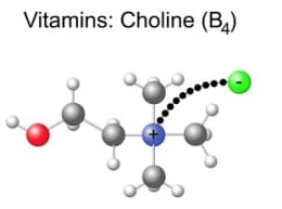 Choline Structure