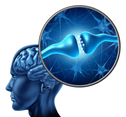Choline for Mental Health