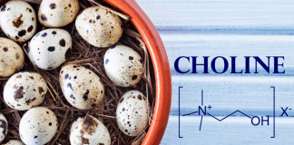 Quail eggs and choline chemical formula