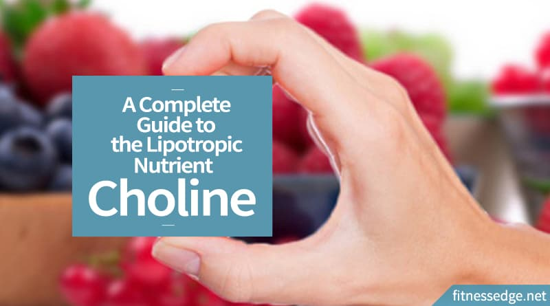 A Complete Guide to the Lipotropic Nutrient Choline