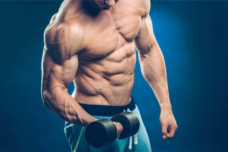 Bodybuilder Flexing Biceps