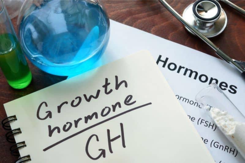 Ipamorelin Growth Hormone Activator